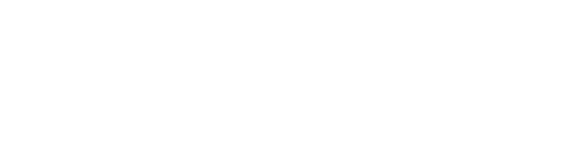logo Soladis white